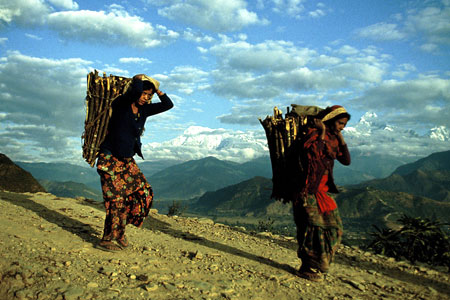 Nepalese women carry down firewood from the higher Himalayan reaches above Pokhara